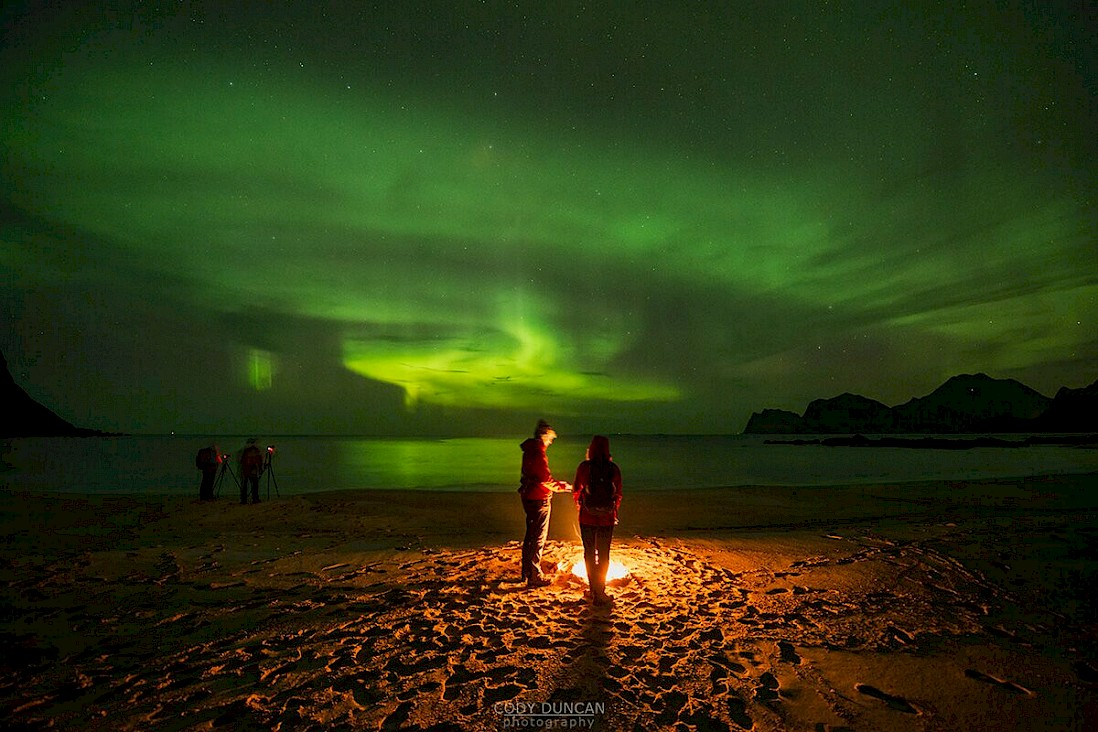 Aurora hunting in Lofoten